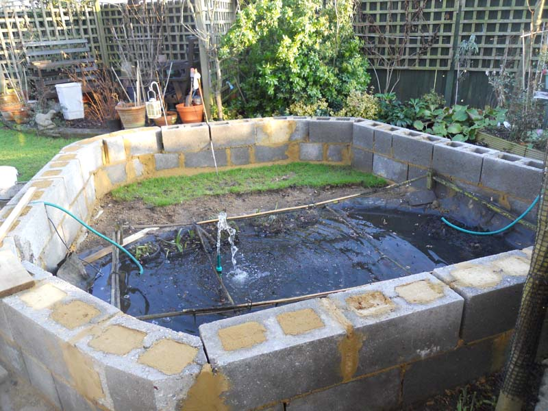 Mo got her bigger pond here 39 s how your pond forum for Garden pond overflow pipe